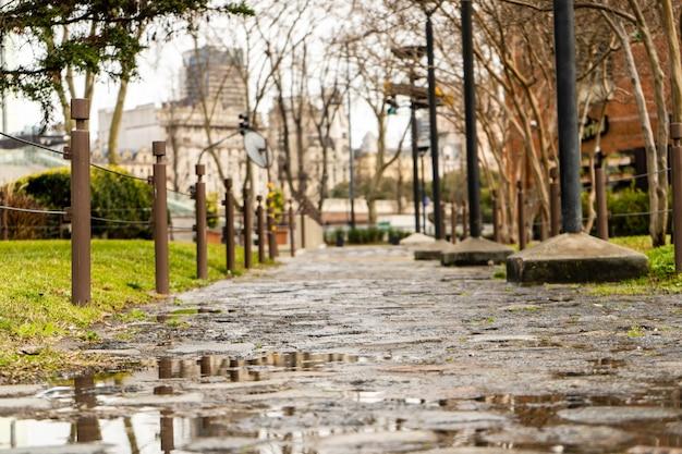 Пешеходная улица, мощенная булыжником, мокрая от дождя.