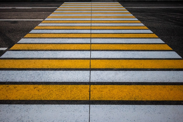 Pedestrian crossing on an asphalt road in the rays of the setting sun