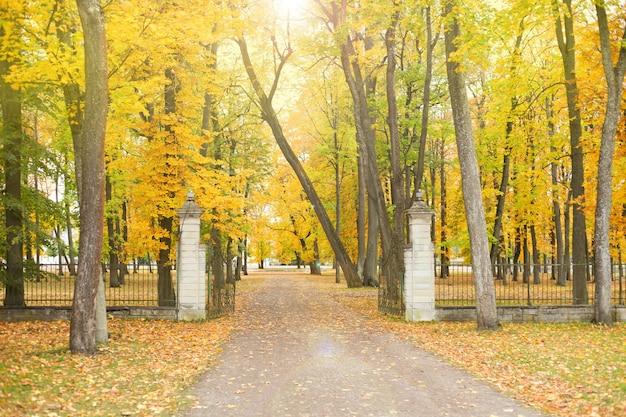가을 공원의 보행자 도로 가을 풍경 탈린 에스토니아의 kadriorg라는 가을 공원