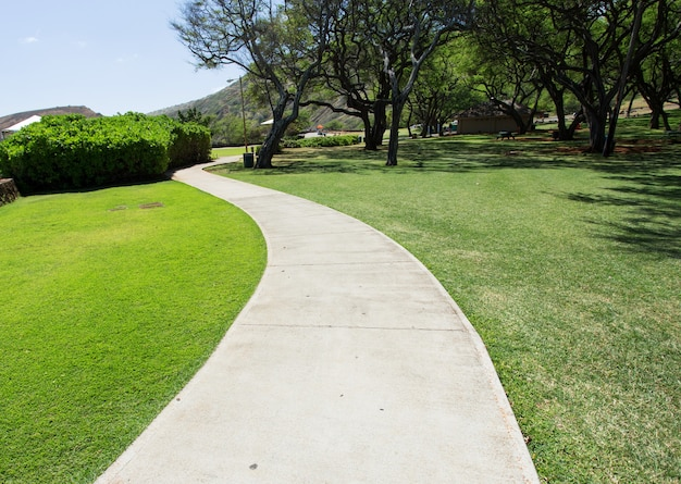 Пешеходная дорожка в парке