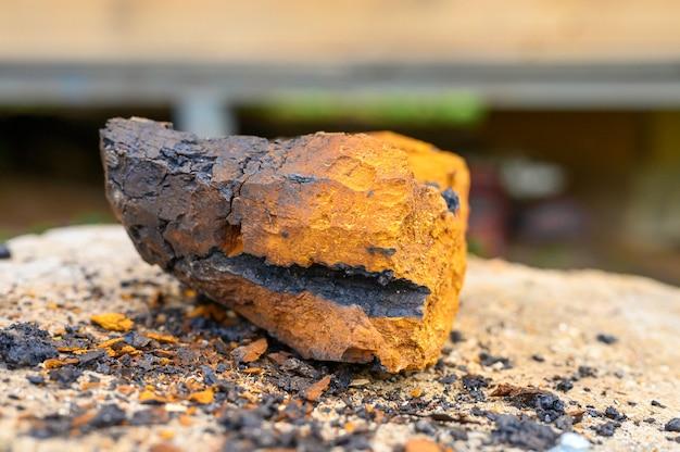 木製の切り株の背景に皮をむいた作品野生のキノコチャガ白樺菌