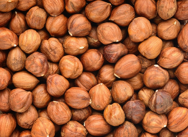Peeled raw hazelnut macro background