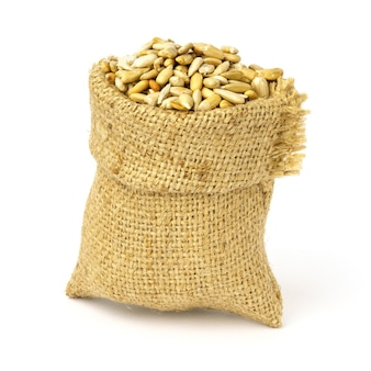 Peeled sunflower kernels in a sack bag isolated.