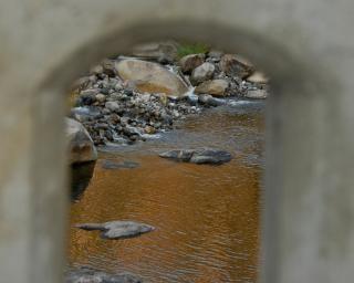 Peering through the bridge
