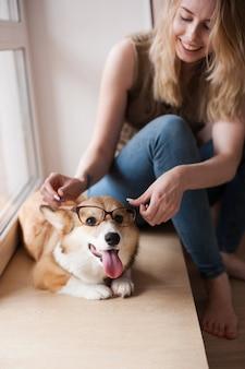 女の子は犬に眼鏡をかけます。面白いウェールズコジpembroke子犬眼鏡