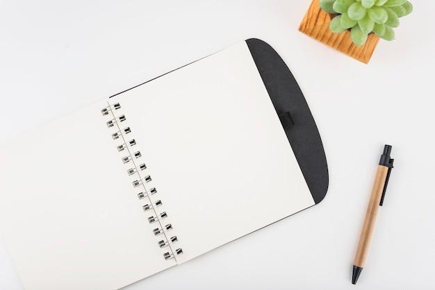 Penna e pianta vicino al notebook