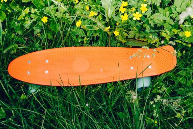 花と草の上のペニーボード。緑の芝生の上に横たわっている青い車輪とピンクのペニーボード。