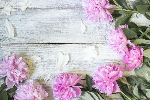 Крупный план красивого розового peonie цветет с лепестками на белом деревянном столе. плоская планировка