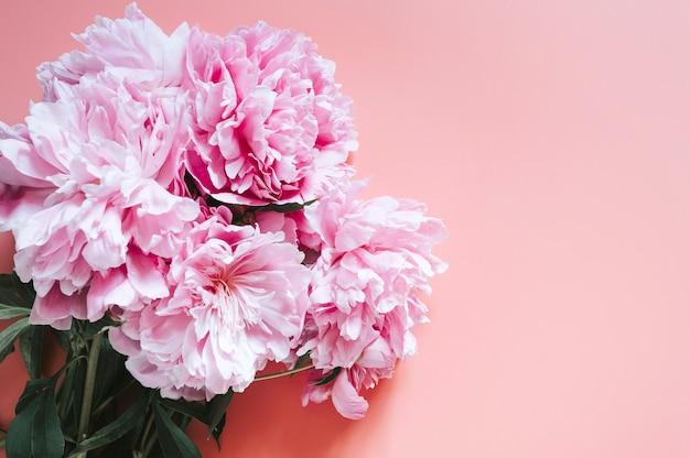 鮮やかなピンクの背景に牡丹の花束の花