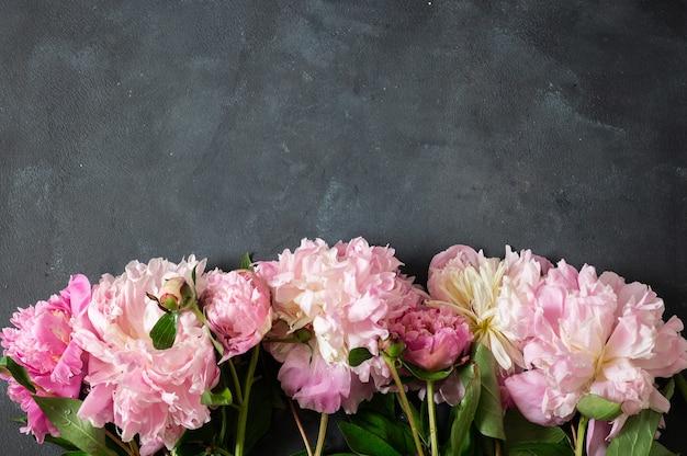 Пионы flat lay. красивые цветы пиона на темной стене.