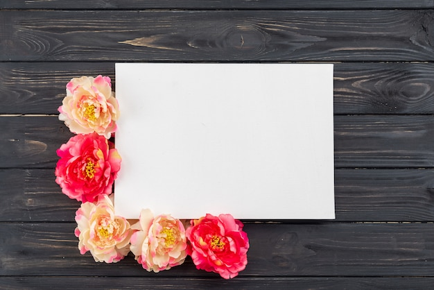 Peonies and white sheet of paper on a dark wooden background