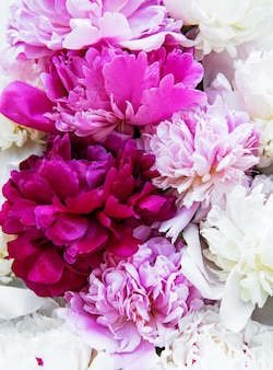 Peony flowers as a background