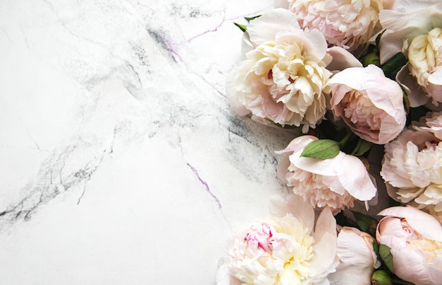 Peony flowers on a marble surface