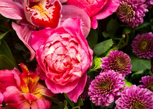 Пионы цветы пионовидные розы на бежевом фоне пространство для текста поздравительной открытки