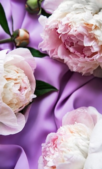 Peony flowers on a violet silk background