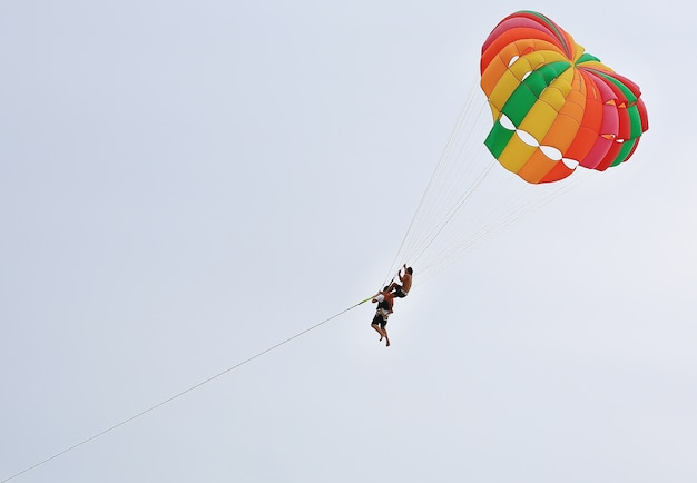People are enjoy parasailing water sport