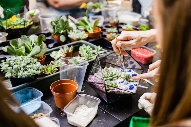 People are thrown of the plant, hand gloves and succulents
