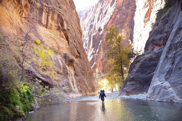 バージン川、ザイオン国立公園、ユタ州、アメリカ合衆国で狭いザイオンでハイキングする人々。