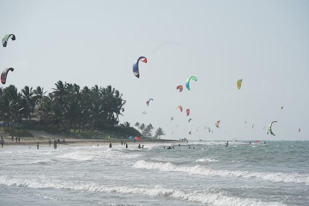 ドミニカ共和国の木々の近くのビーチでカイトボーディングの人々