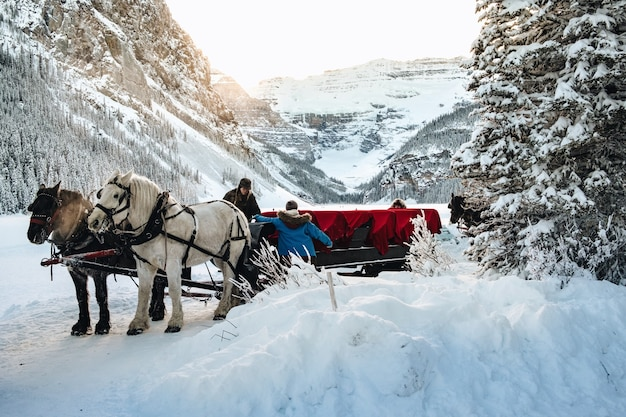 カナダのレイクルイーズ近くの雪に覆われた森の中の森とワゴンの近くの人々