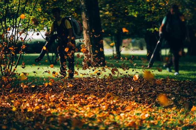 중장비 잎 송풍기를 운영하는 사람들