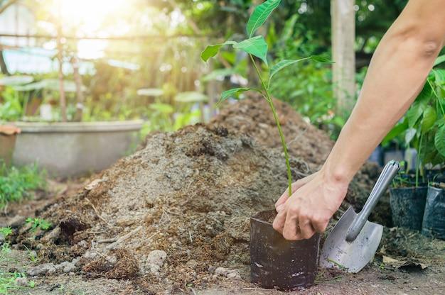 비닐 봉지에 나무를 심는 사람들