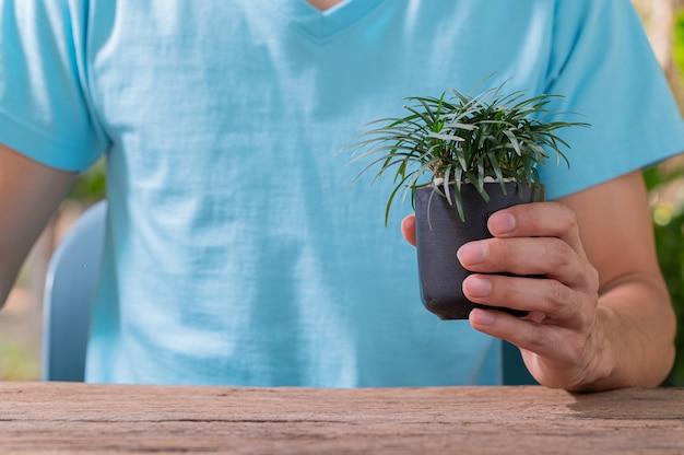 사랑 식물 사랑 환경의 냄비 개념에 나무를 심는 사람들