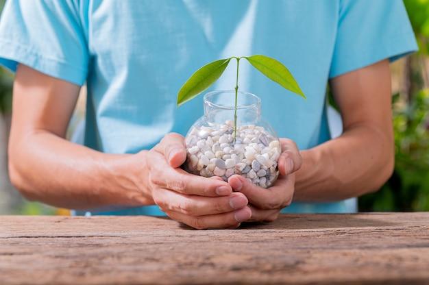 ポットに植樹する人々愛の植物の概念は環境を愛する