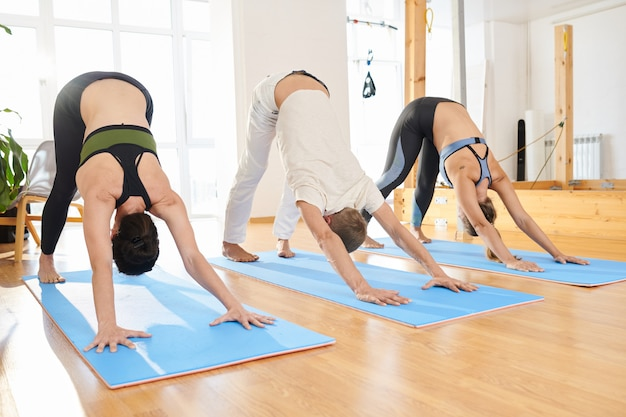 People practicing  downward-facing dog pose at yoga class