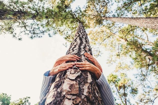 森林破壊の概念から木を保護する人々は、森の中の松を愛し、地球の前向きなメッセージを救うために抱き締める2人の上級白人の手で