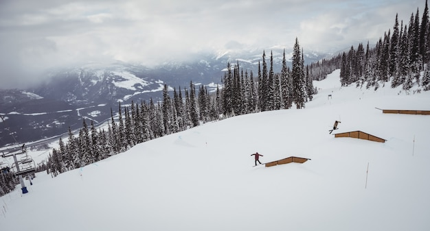 Люди катаются на лыжах по снежным альпам на горнолыжном курорте