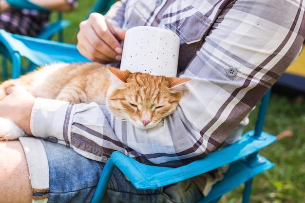 사람, 관광 및 자연 개념-자연에 재미 있은 고양이를 들고 남자