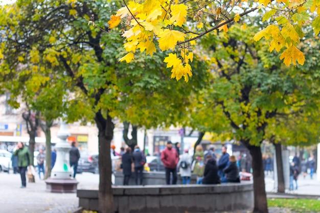 人々は秋に都市公園を歩いてリラックスします
