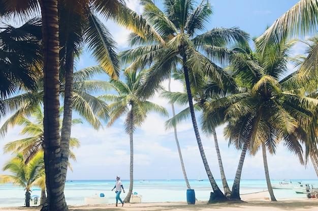 청록색 물 앞에 손바닥과 황금빛 해변을 걷는 사람들