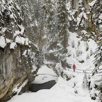 People walking along trail in johnston canyon, banff national park, alberta, canada