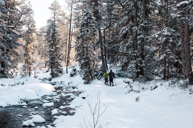 낮에는 눈 덮인 숲을 걷는 사람들