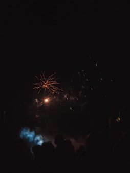 Persone che guardano i fuochi d'artificio sul cielo notturno
