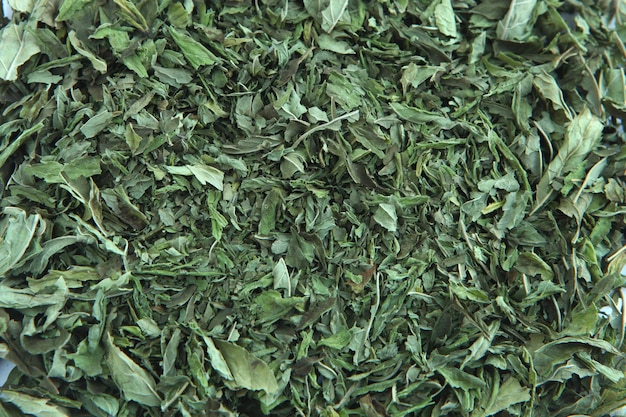 Peppermint tea green leafs - dried peppermint on white