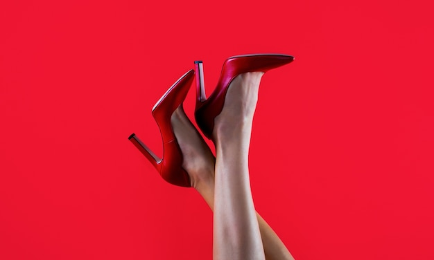 Perfect female legs wearing high heels shapely legs a girl in shoes highheeled high heel shoes beautiful legs woman