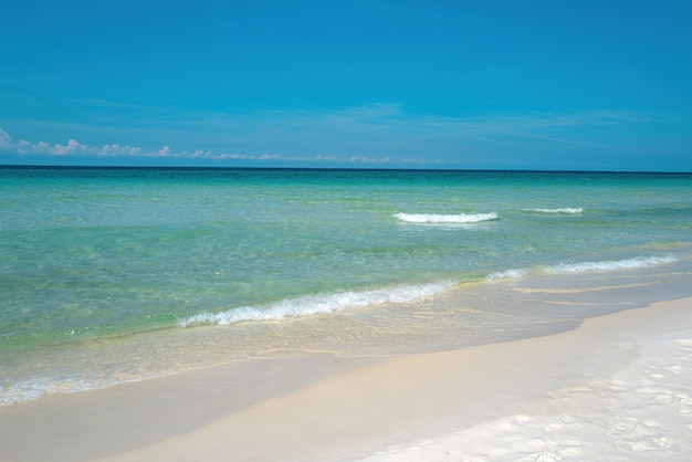 Perfect ocean background summer beach and sea