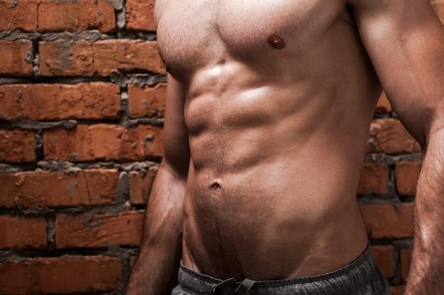 完璧な胴体。レンガの壁に立ってポーズをとっている若い筋肉の男のトリミングされた画像