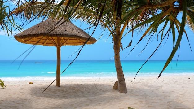 야자수와 우산이있는 완벽한 하얀 모래 해변, 잔지바르, 탄자니아