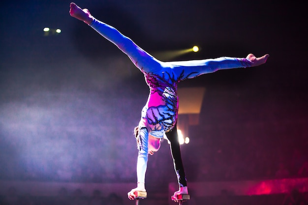 Performances in the circus