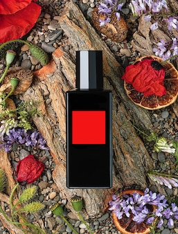 Perfume bottle on a natural background of tree bark, flowers and stones, top view. beauty and fashion, perfume template