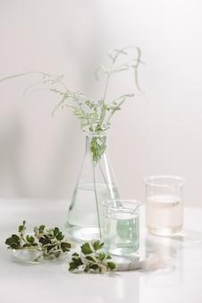 향수 오일 개념. 테이블에 주입 된 꽃 물으로 실험실 유리 그릇