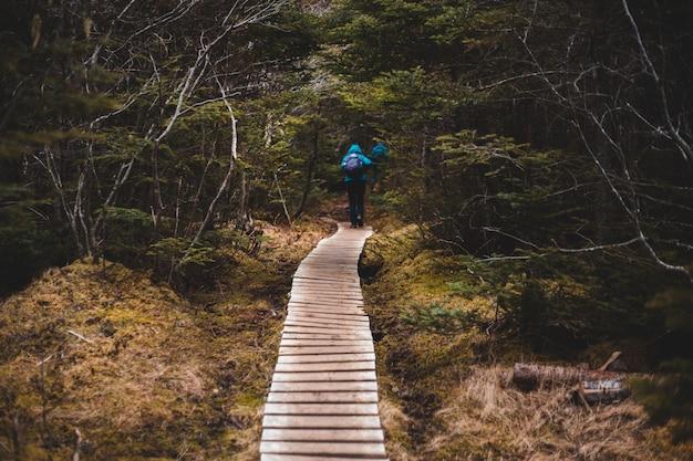Persona in giacca blu che cammina sul ponte di legno