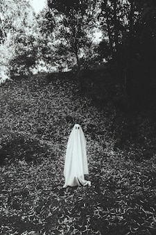 Person in ghost costume in park