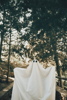 Person in ghost costume standing in woods