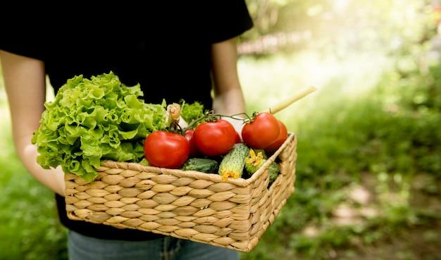 野菜の高いビューでバケットを保持している人