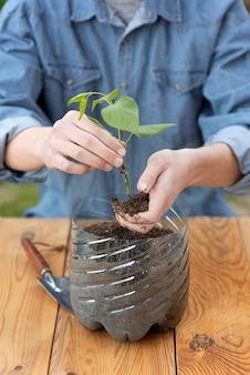 Persona che tiene una pianta in un vaso di plastica